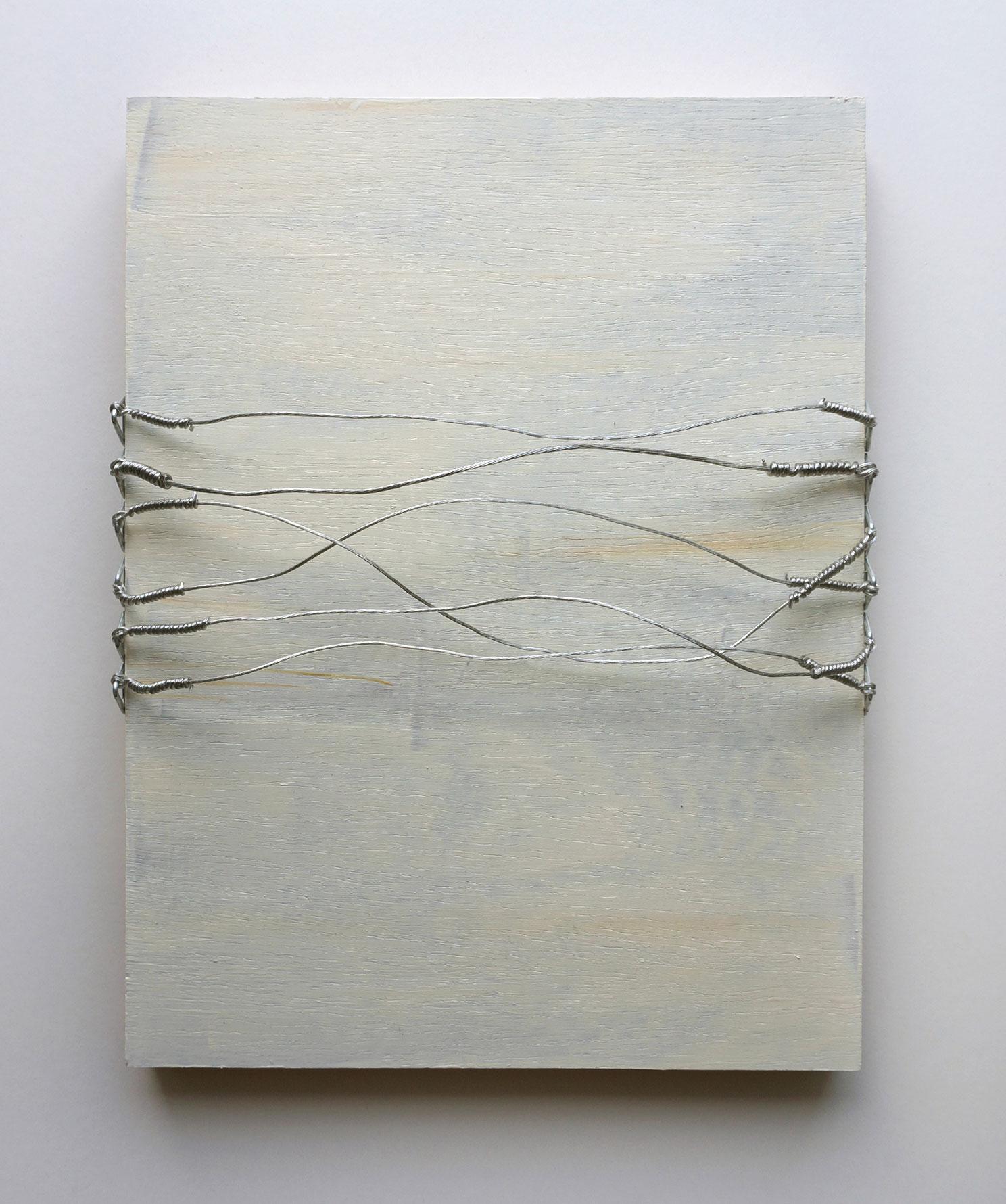 Vlatka Horvat, Disturbances (Wire Lines)