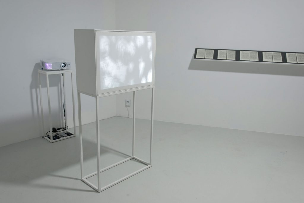 Razvan Anton, Too young for memories, ElectroPutere Gallery, installation view